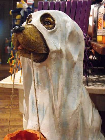 Ghost Dog Statue for Halloween