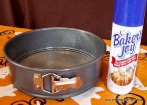 Bakers joy is a non-stick spray with added flour for baking