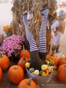 Upside down striped legs in a pail with pumpkins for Halloween