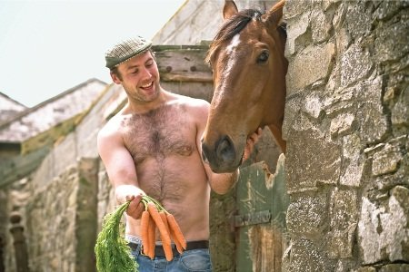 Irish farmer feeds carrots to a horse