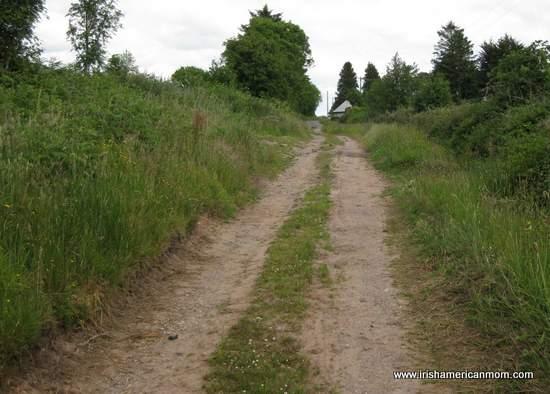 Irish country road or boreen