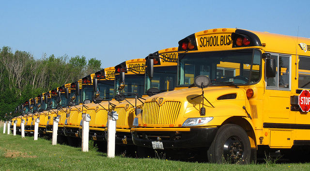 Parked yellow American school buses