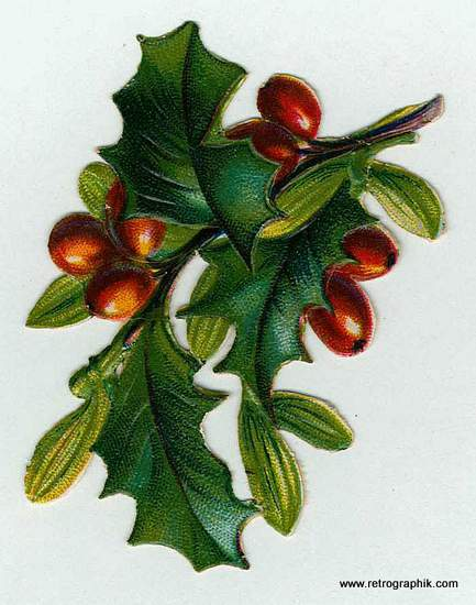 Vintage Christmas card holly