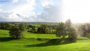 Green pastureland in Armagh Ireland