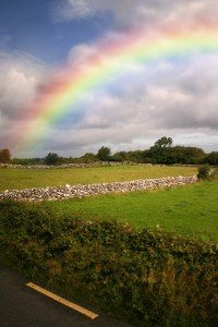 A wide rainbow arching over an Irish field with stone boundary wall