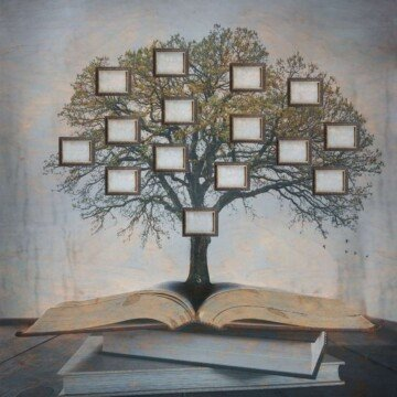A tree with frames on the branches on an open book