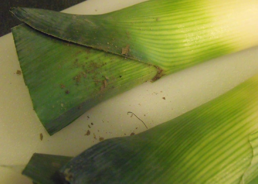 The dirt found beneath layers of leek leaves since leeks are grown in the ground.