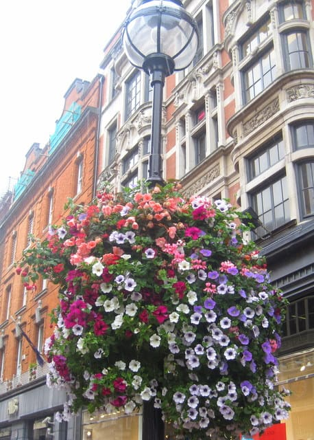 A close up of a flower arrangement in front of a building