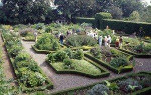 Manicured herb gardens at Ballymaloe House in County Cork Ireland