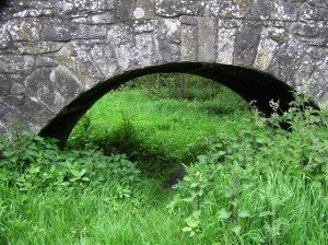 Grass and nettles growing wild beneath an arched bridge in Omagh Northern Ireland