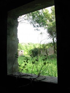 A window of a ruined building with nettles growing on the window sill