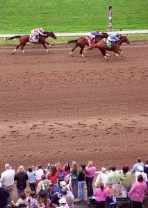 Three horses at the finish line in a horse race