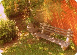 A small wooden bench in the shade
