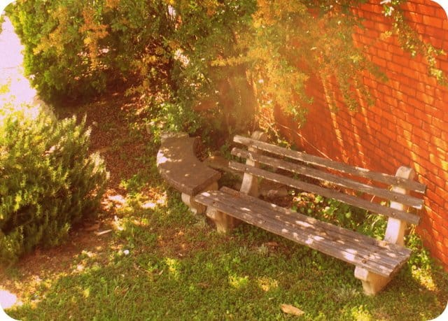 A wooden park bench sitting in the grass