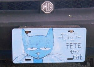 A blue cat on a car licence plate