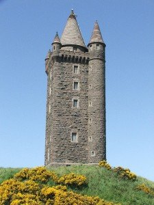 Furze on a hill by the granite stone tower called Scrabo Tower in County Down
