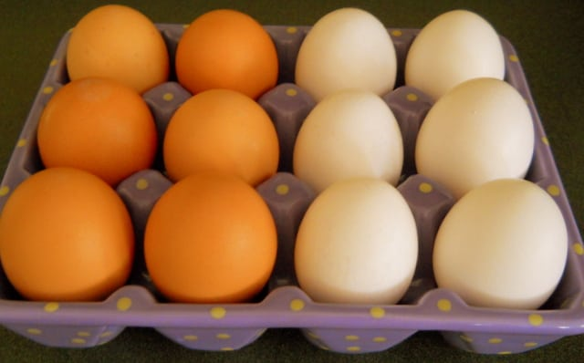 Six brown eggs and six white eggs in an egg container
