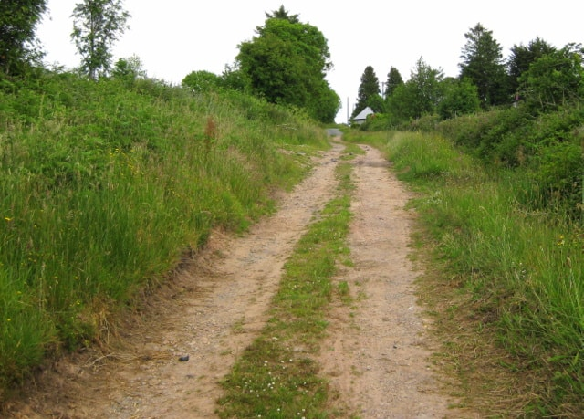 A grass verge in the middle of an dirt Irish farm road