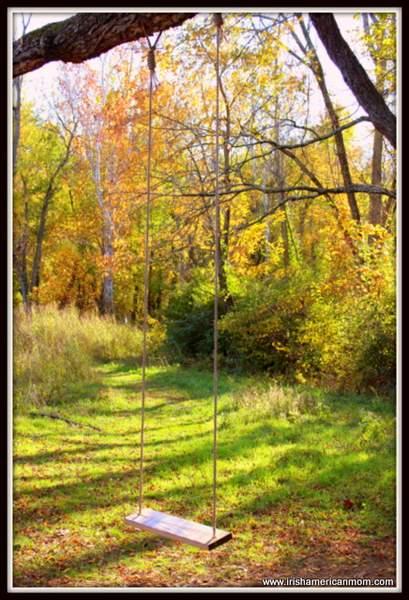 A Tree Swing In Fall