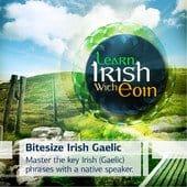 Bitesize Irish Gaelic logo