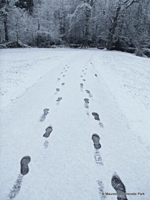 foot prints leave a track on a snowy path
