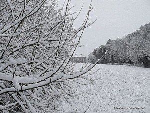Snowy tree branches frame a view of Doneraile Court