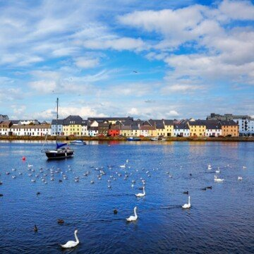 Swans and a boat in a body of water in front of a row of colorful houses