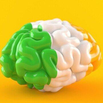 Model of a brain paintedin green white and orange stripes