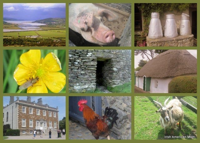 Photos Of Ireland In Collage