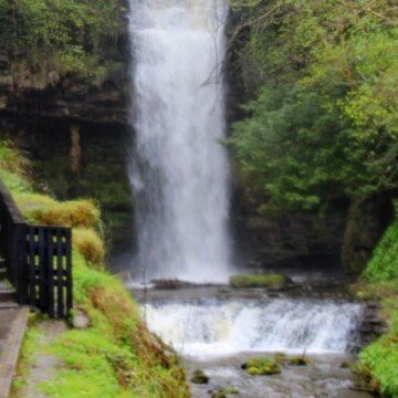 A large waterfall in a forest