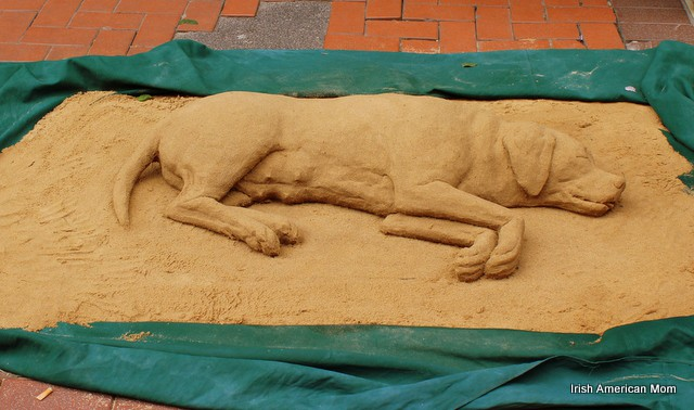 Sand dog on Grafton Street, Dublin