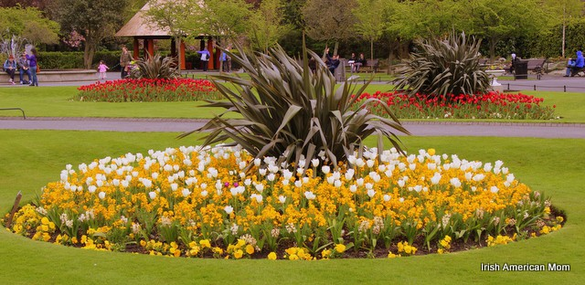 Dublin's Flower Beds
