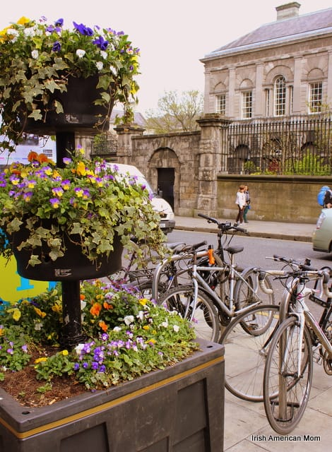 a three tiered flower display outside Trinity College Dublin