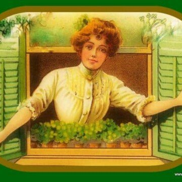 looking out the window through green shutters