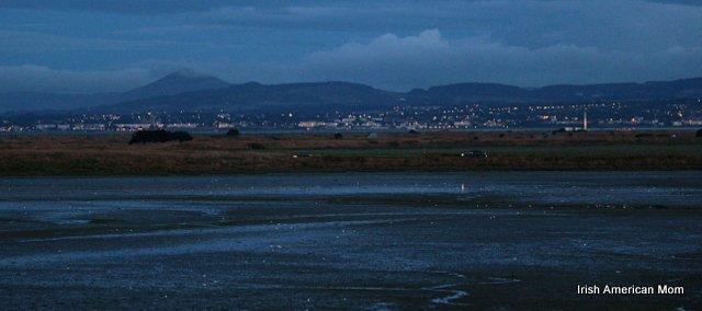 Dublin By Moonlight