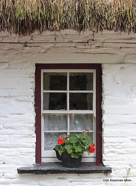Irish cottage window with a black kettle growing red geranium flowers on the window sill