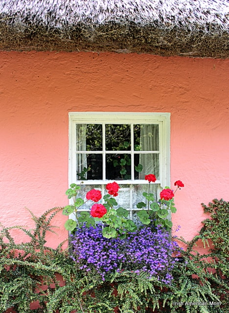a pink thatched cottage with white window and geraniums in a flower box