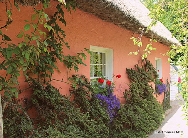 pink Irish cottage with flowers growing beneath the thatched roof