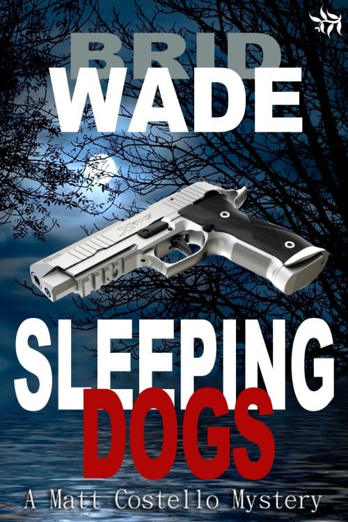 Sleeping Dogs by Brid Wade - 500