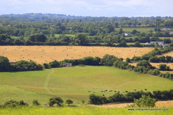 Irish Countryside seen from top of mound in Knowth, County Meath