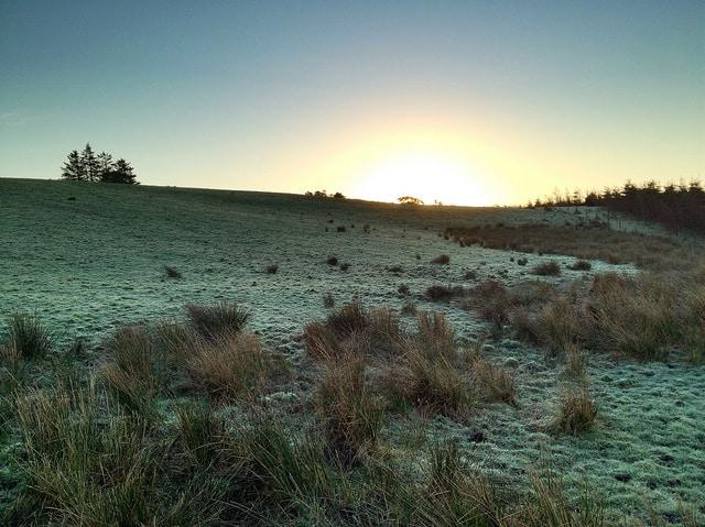 Sunrise over Irish fields