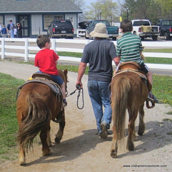 Pony Riding at Kentucky Horse Farm