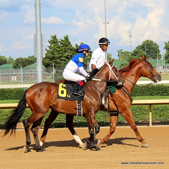 Race horses training at Churchill Downs