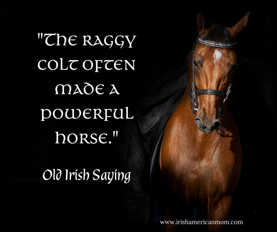 A black graphic featuring a brown horse highlighting the old Irish saying 'the raggy colt often made a powerful horse.'