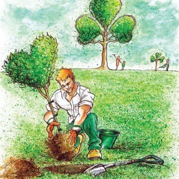 Cartoon featuring a man planting a heart shaped tree with shamrock trees in the background