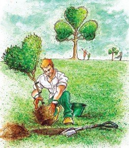Planting a tree in Ireland - love and shamrocks