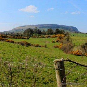 Knocknarea from Carrowmore