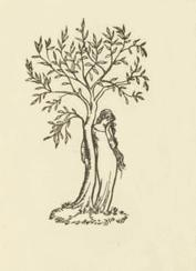 Mythical Irish Female - Emer Standing By A Tree