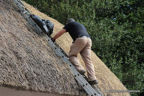 Thatching an Irish cottage