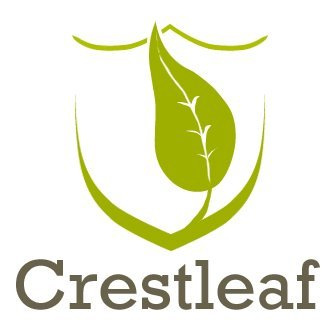 Introducing Crestleaf – An Outstanding Genealogy Website